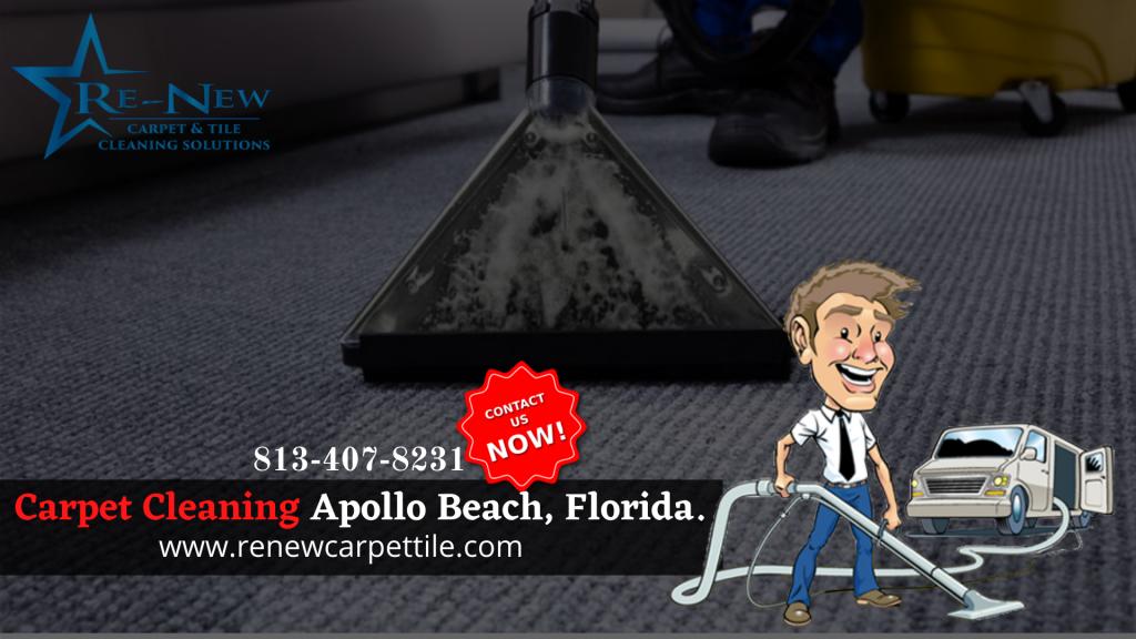 carpet cleaning apollo beach florida